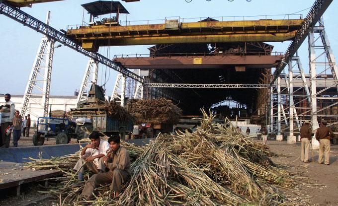 Ashoka Sugar Plants